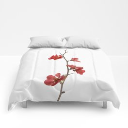 Branch with flowers Comforters