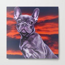 Frenchie The French Bulldog Metal Print