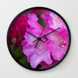 Blush Rhododendron Wall Clock