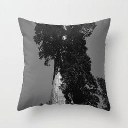 Sequoia National Park VIII Throw Pillow