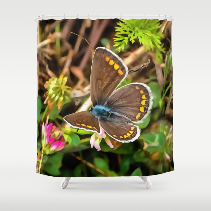 Common Blue Butterfly Polyommatus Icarus Shower Curtain