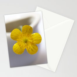 Mayflower Stationery Cards