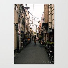 Japanese Roads Canvas Print