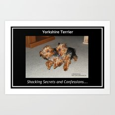 Yorkshire Terrier - Shocking Secrets and Confessions Art Print