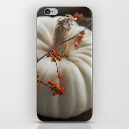 Heirloom Pumpkin iPhone Skin