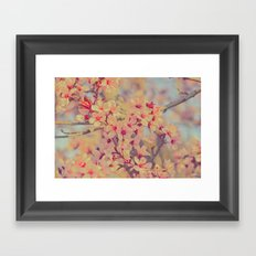 Vintage Blossoms - In Memory of Mackenzie Framed Art Print