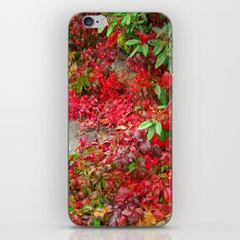 Cascade of Leaves iPhone Skin