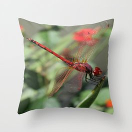 Red Skimmer or Firecracker Dragonfly Throw Pillow