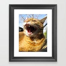 Sherby Framed Art Print