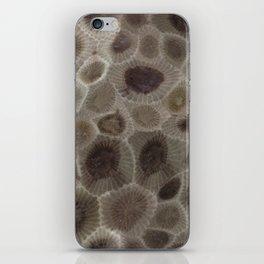 Petoskey Stone iPhone Skin
