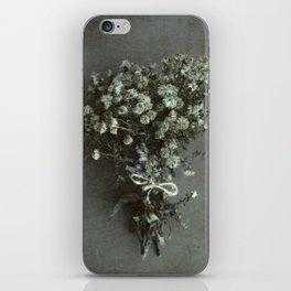 Winter Michaelmas Daisies iPhone Skin