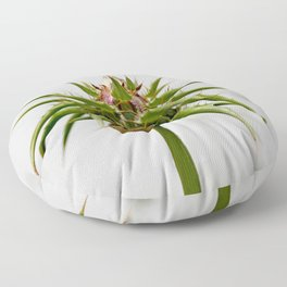 Thistle bud and snail Floor Pillow