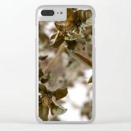 Basil Clear iPhone Case