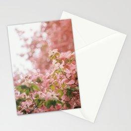 dogwood Stationery Cards