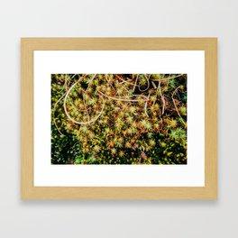 Beyond Stars Framed Art Print