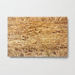 Ein Bett im Kornfeld / a bed in the hay Metal Print