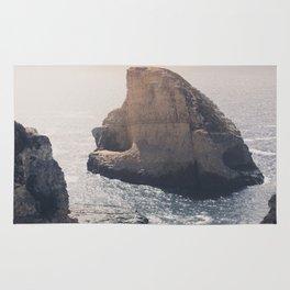 Shark Fin Cove Rug