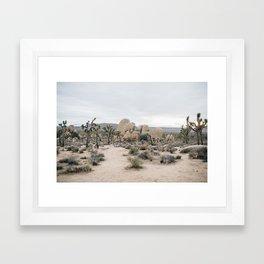 Lost in Joshua Tree Framed Art Print