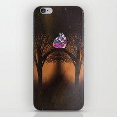 rabbit-937 iPhone & iPod Skin