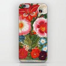 Mayflower mix iPhone & iPod Skin
