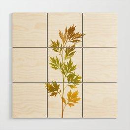 the herbarium yellow Wood Wall Art