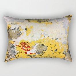 Broken Paint Rectangular Pillow