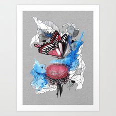 Butterfly I by carographic, Carolyn Mielke Art Print