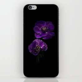 Two Purple Anemones iPhone Skin