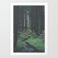 Through the dark - Nydoa Photography Art Print