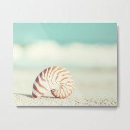 Seashell Beach Photography, Shell Coastal Ocean, Teal Turquoise Aqua Art, Nautilus Seaside Photo Metal Print