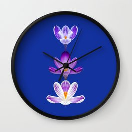 Violet Crocus Flower Trio Wall Clock