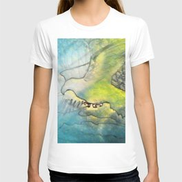 Eagle Valley Fantasy T-shirt