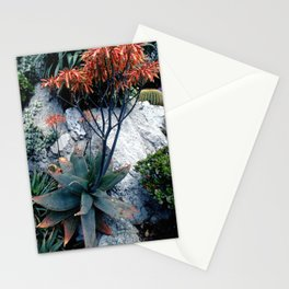 Succulent Garden Coral Orange and Green Stationery Cards