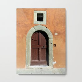 Brown door Metal Print