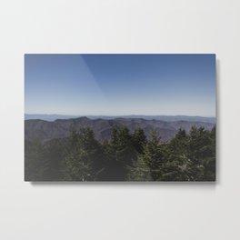 Mount Mitchell View Metal Print