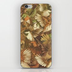 Red-Throated, Black-capped, Spotted, Barred iPhone Skin