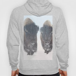 Two Bison In Snow #society6 #bison #buyart by Lena Owens @OLena Art Hoody