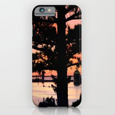 Early morning behind a Norfolk Pine Slim Case iPhone 6s