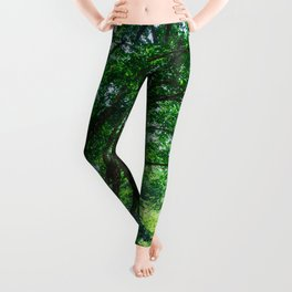 The Greenest Tree Leggings