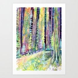 Redwoods Road Trip Art Print