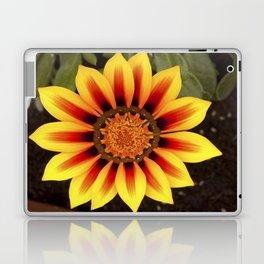 Gazania Flower Laptop & iPad Skin