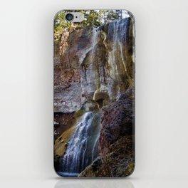 Paulina Falls iPhone Skin