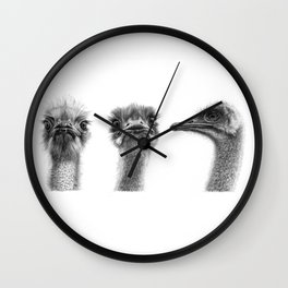 Three ostriches SK1005354 Wall Clock