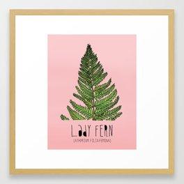 Lady Fern Framed Art Print