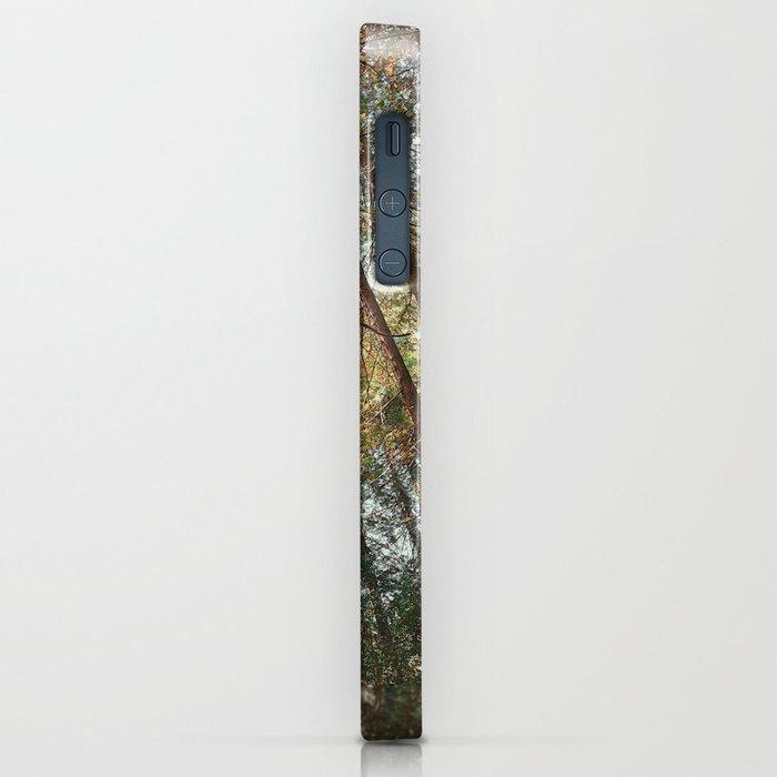 Redwood Trees iPhone Case