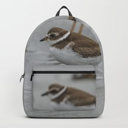 Pair of Plovers on the beach Backpack