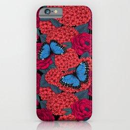 Blue morpho iPhone Case