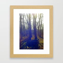 Log Pile Framed Art Print