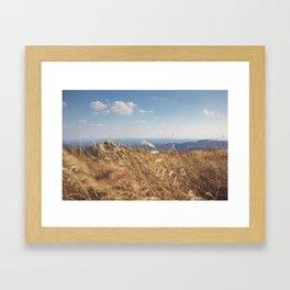 Moment of Zen Framed Art Print