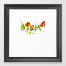 Milkweed Framed Art Print